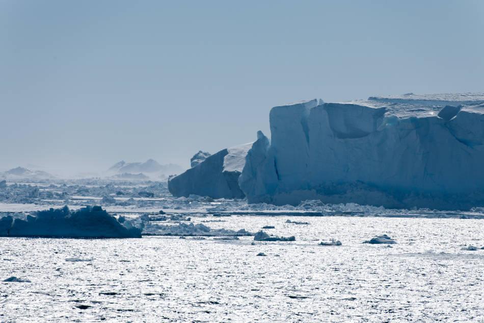 Das Weddellmeer ist ein Rückzugsort für kälteliebende Arten. (Foto: Vreni Gerber)